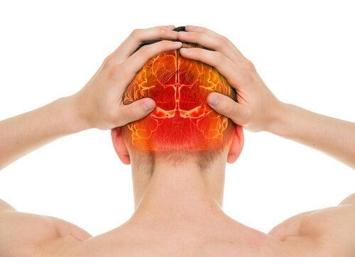 Can the brain feel pain?