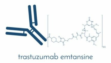 Trastuzumab: Therapy Against HER2 Positive Breast Cancer