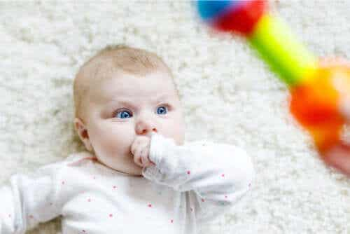 Discover Why Babies Stare