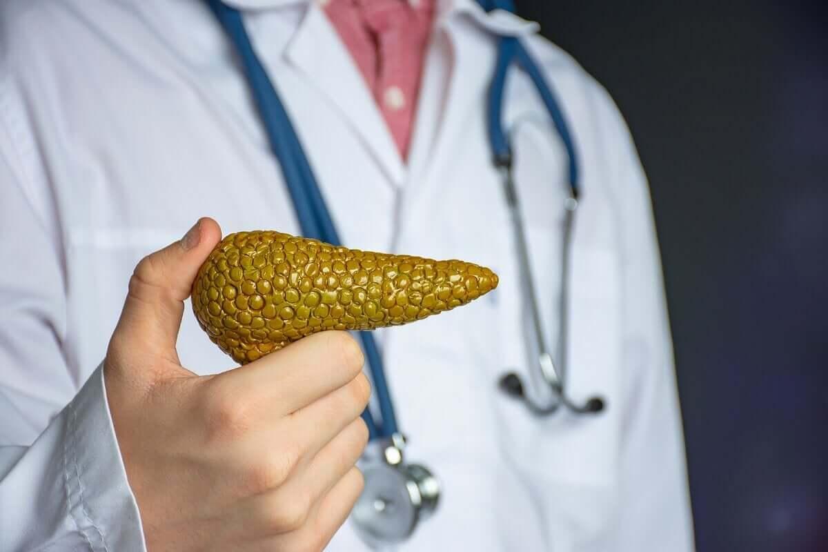 Γιατρός με ψεύτικο πάγκρεας