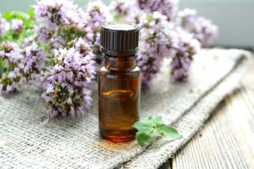 Essential Oils For Winter Illnesses