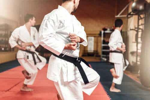 The Differences Between Karate and Taekwondo
