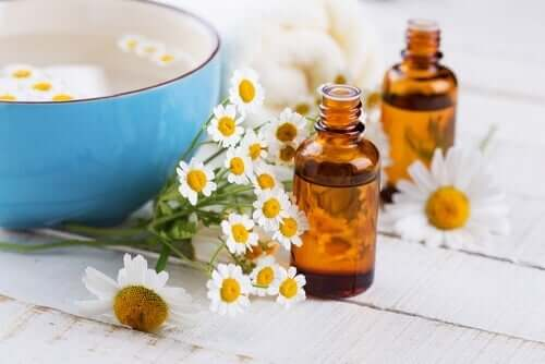 Chamomile flowers and chamomile essential oil.
