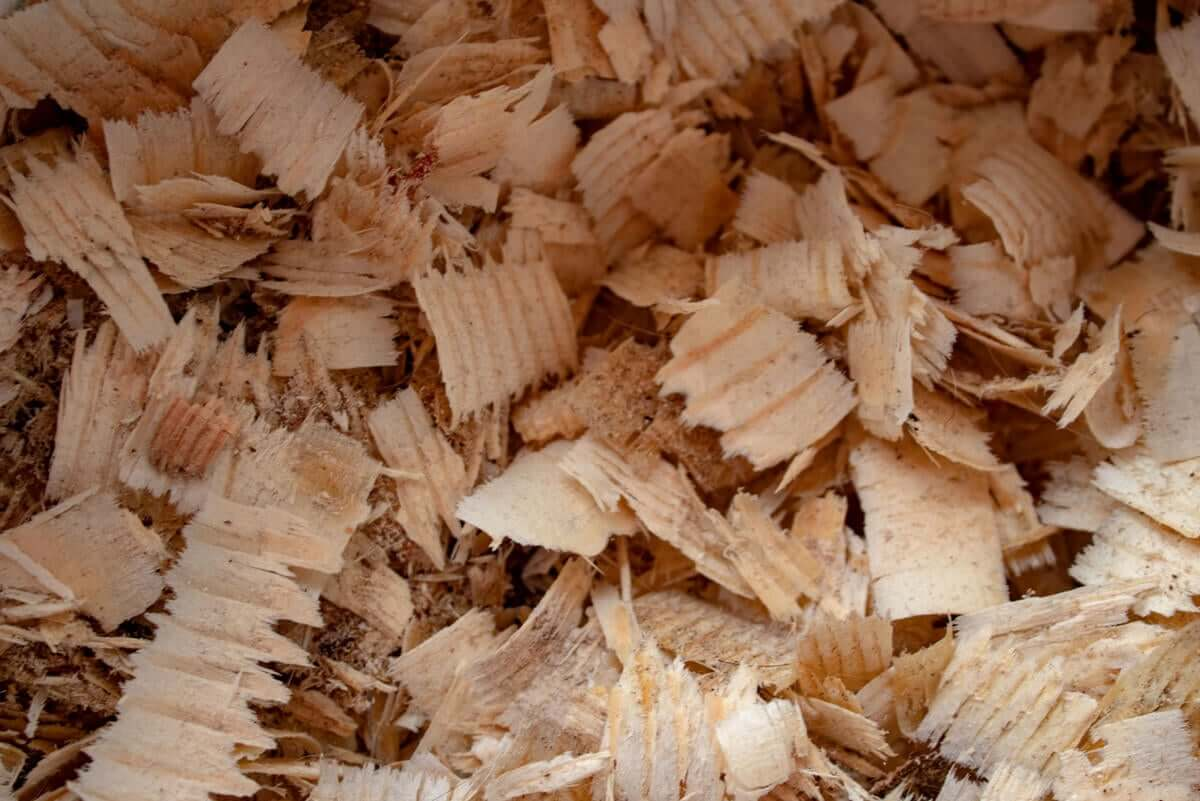 A pile of sawdust.
