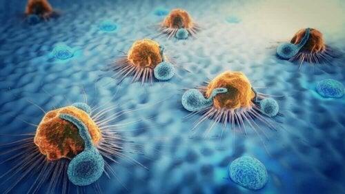 Various cells metastasizing.