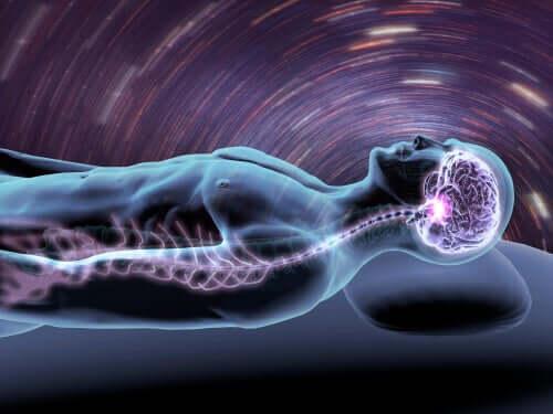 Brain when asleep.