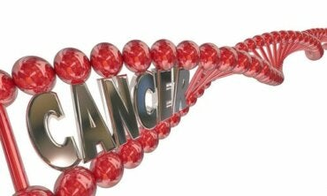 Do You Know about the Genetic Basis of Cancer?