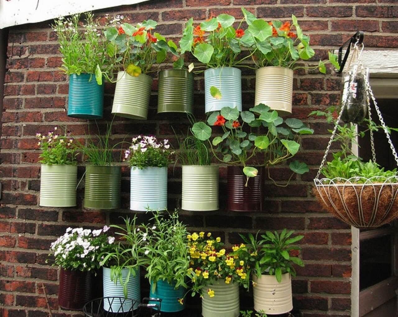 An urban garden.