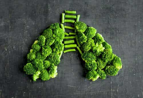 Foods Against Lung Inflammation