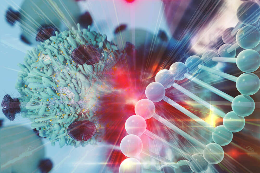 The immune system fighting cancer cells.
