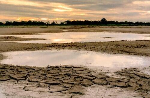 Tørke med en lille smule vand ved solnedgang
