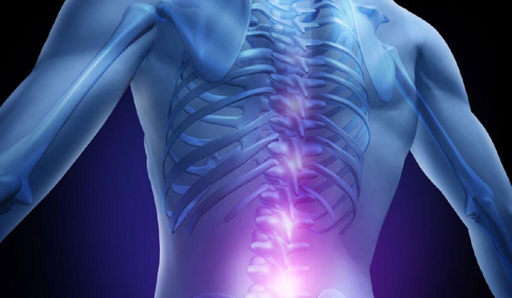 Wizualizacja kręgosłupa