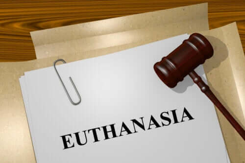 Types of Euthanasia You Should Know About