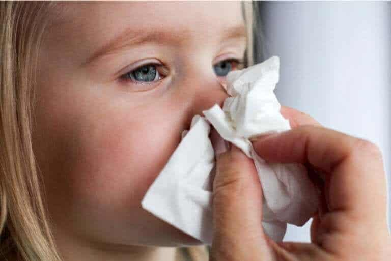What Is Nasal Mucus and What Does It Do?