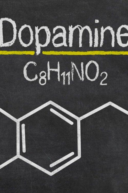 A dopamine formula.