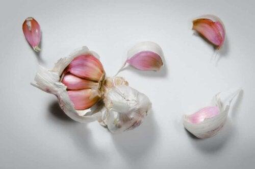 A head of garlic.