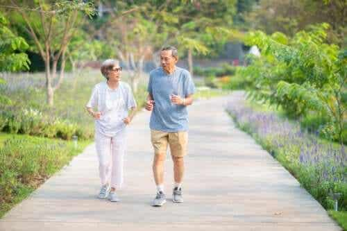 A Recommended Exercise Plan for Older Adults