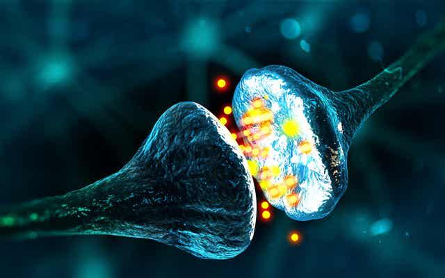 Sitzender Lebensstil - Nahaufnahme von Neurotransmittern