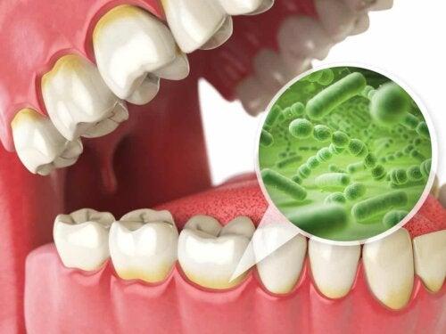 En mund med bakterier