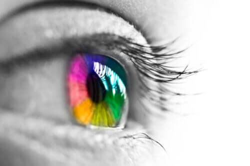 The Characteristics of Human Color Vision