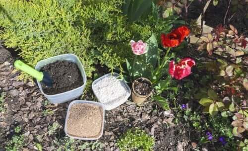 The Characteristics and Uses of Perlite
