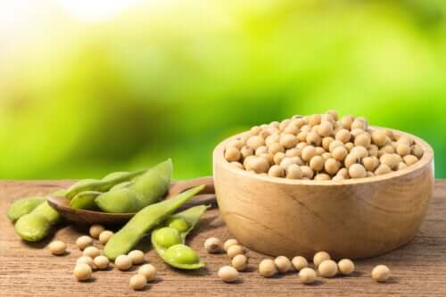 Mung Beans: Properties, Uses, and Benefits