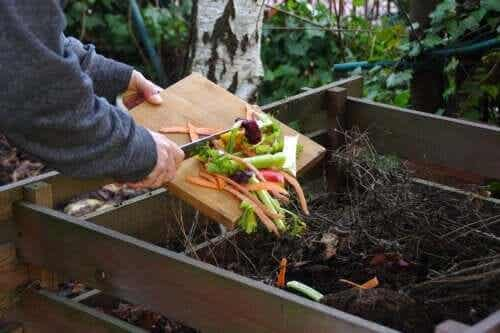 3 Common Mistakes when Making Homemade Compost