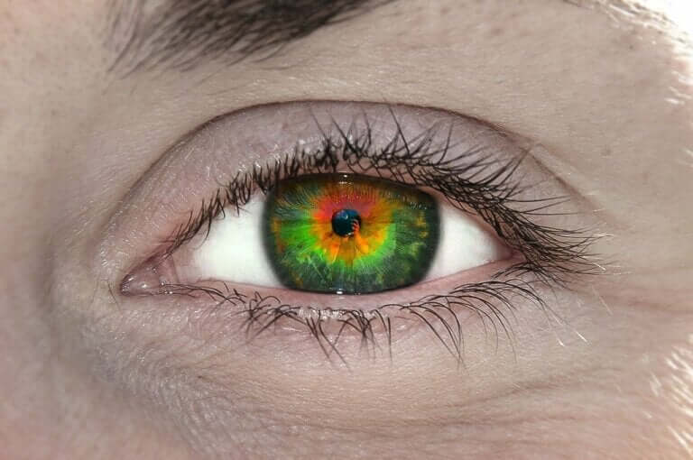 What Is Tetrachromacy and What Does It Mean?