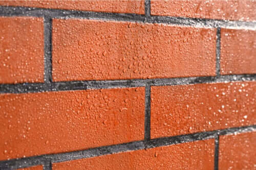 How to Protect Brick Walls From Mold