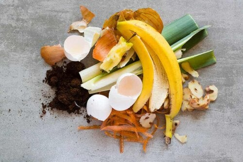organic waste in a pile on the floor