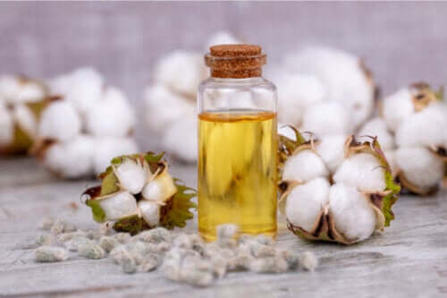 Cottonseed Oil: Uses, Benefits, and Risks