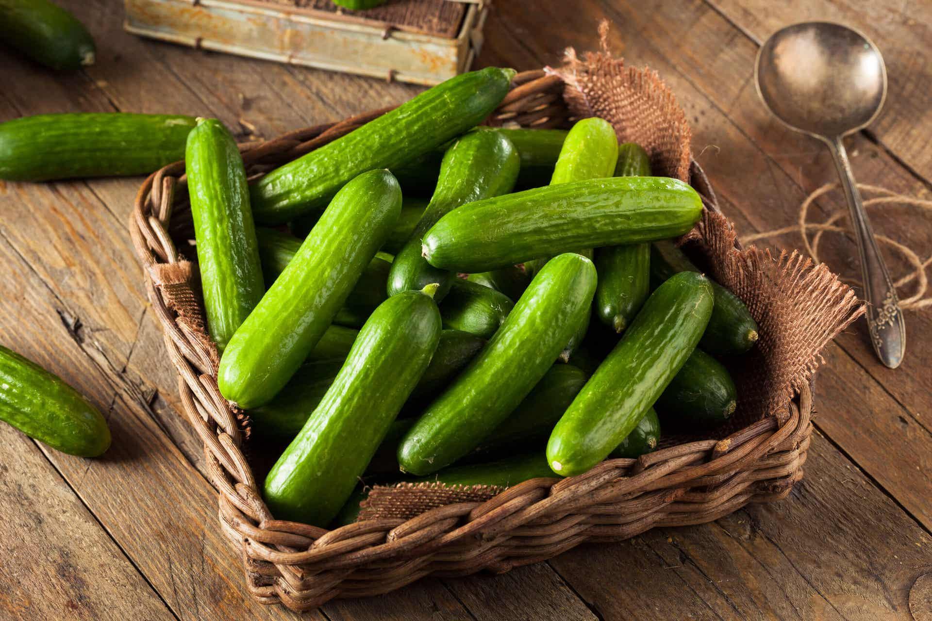 A basket of fresh cucumbers.