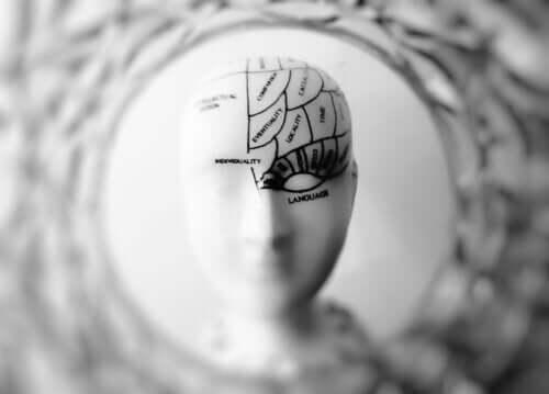 The Brain-Eating Amoeba: Naegleria Fowleri