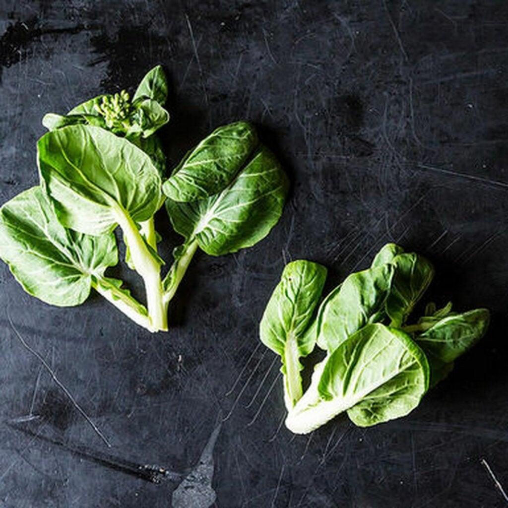 Tatsoi Lettuce Plant: Origin, Nutrients, and a Recipe
