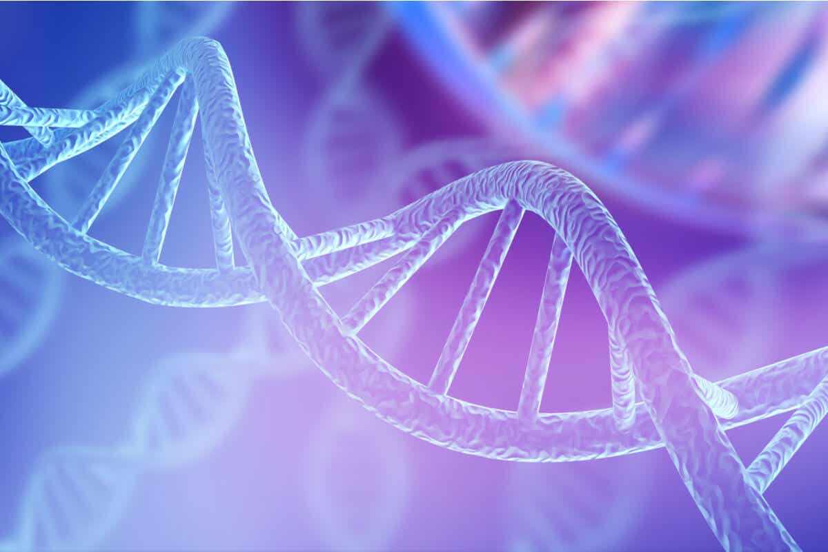 Rubinstein-Taybi Syndrome: a DNA strand.