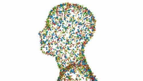 Human Beings as Superorganisms