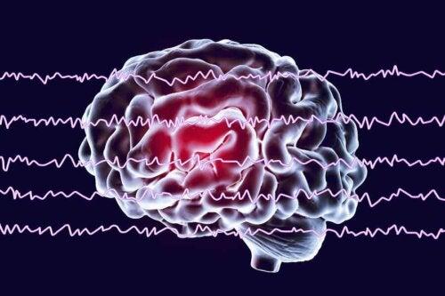 Bølgene til en hvilende hjerne.