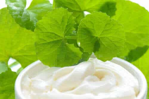Cica Cream: What is it and what's it for?