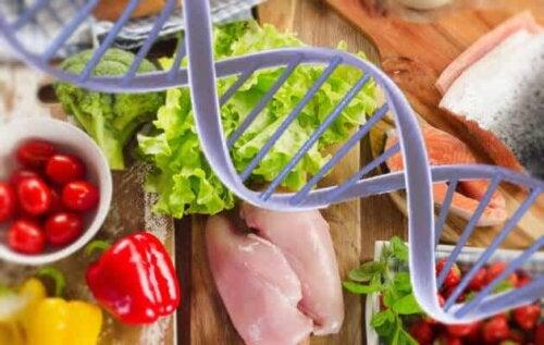 Mat og gener.