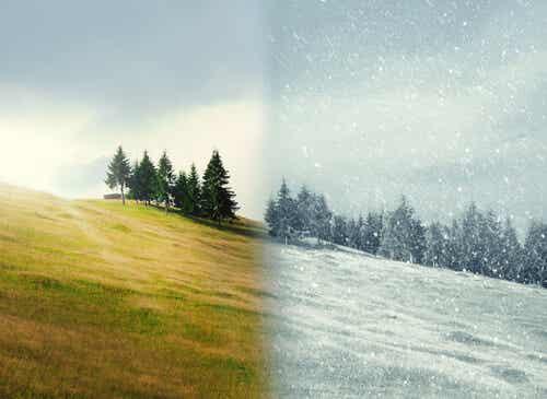 Landskab om vinteren og sommeren