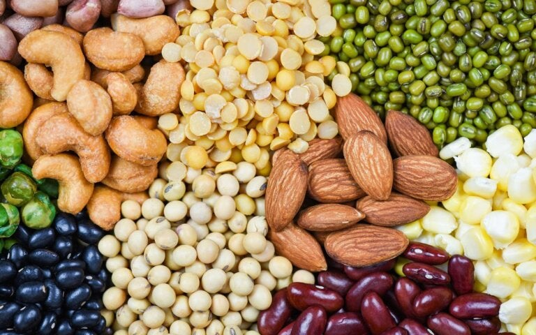 Why It's Important to Know What Anti-Nutrients Are